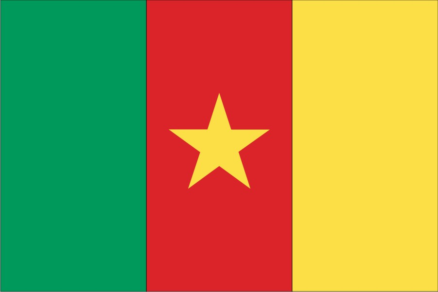 Cameroun Aalborg Flagfabrik
